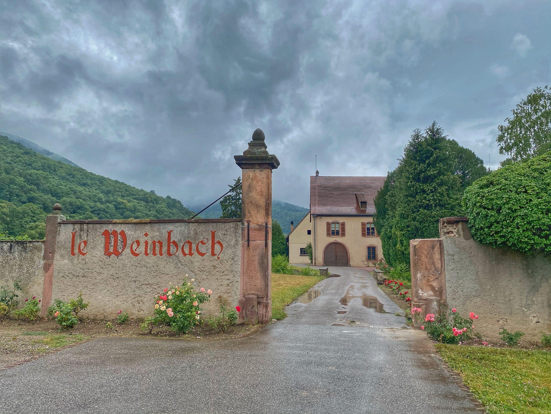 L'art de sublimer le vin avec le Domaine Weinbach !