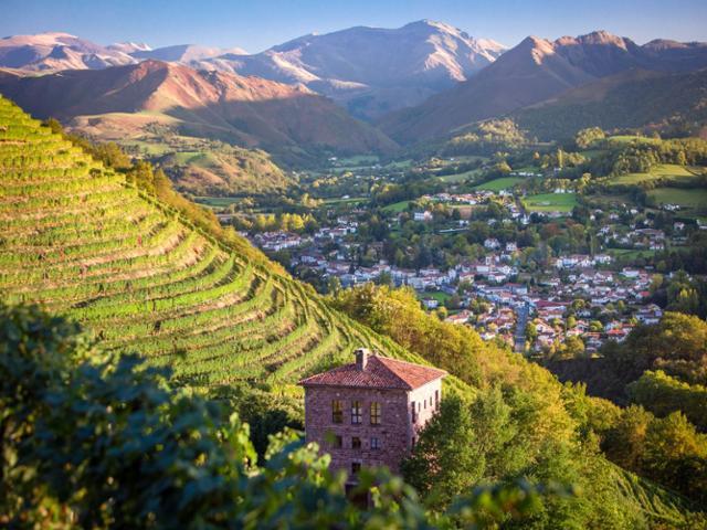 À la découverte des vins d'Irouléguy