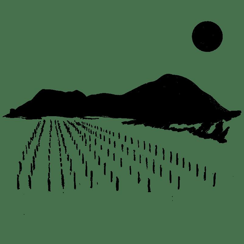 melimelo-blog-icone-mes-rencontres-vigneronnes